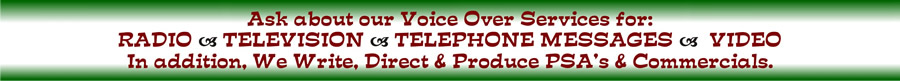 Voice Over Info